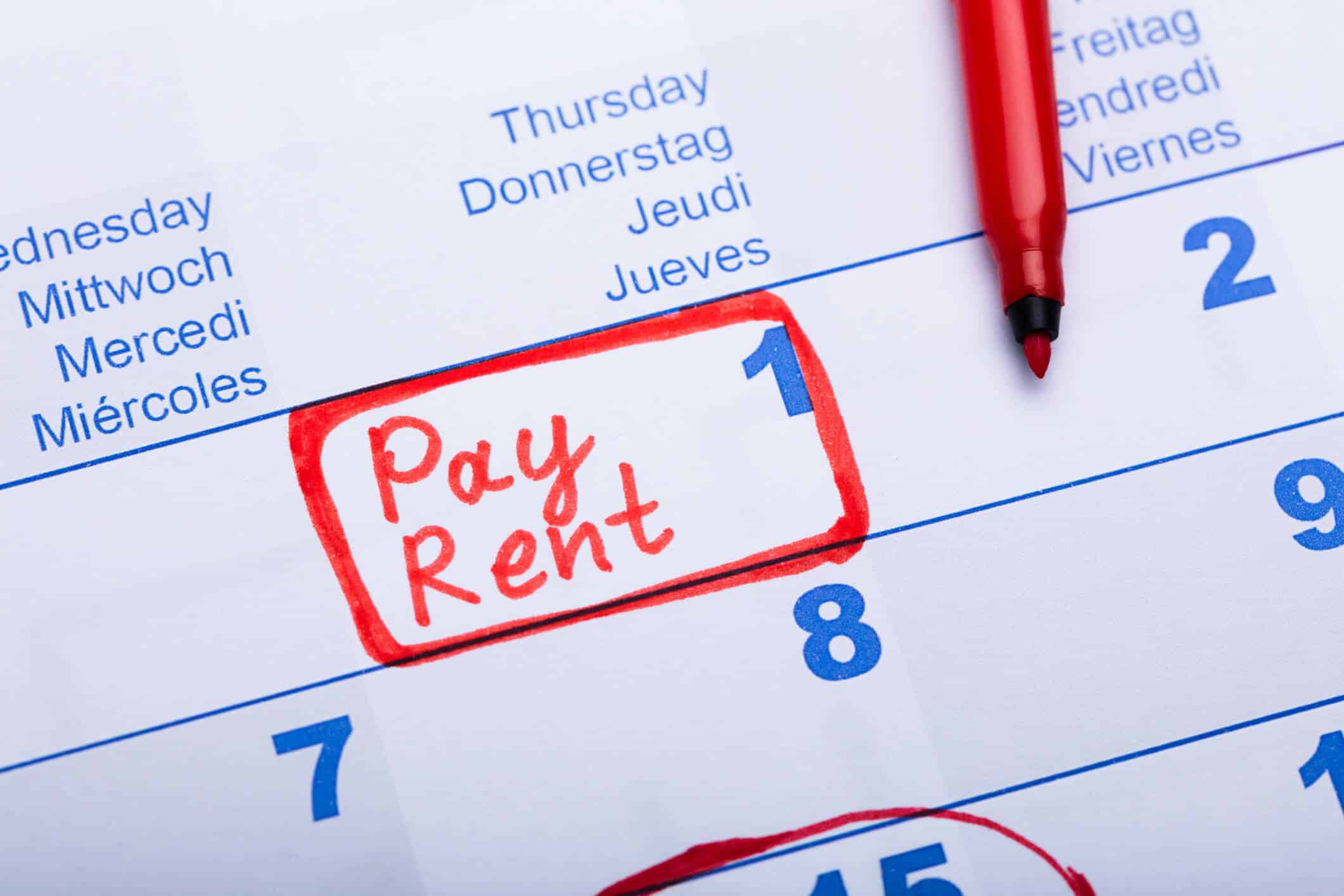 north ogden tenant paying rent